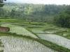 panorama_tailandese