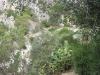 statte_canyon