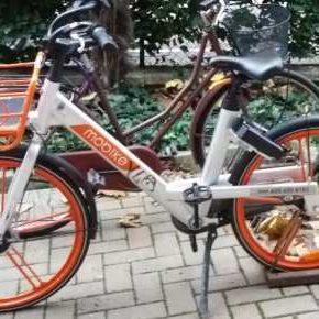 E mo'...bici!
