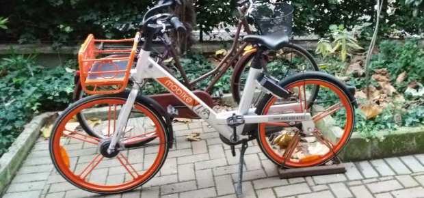 E mo'…bici!